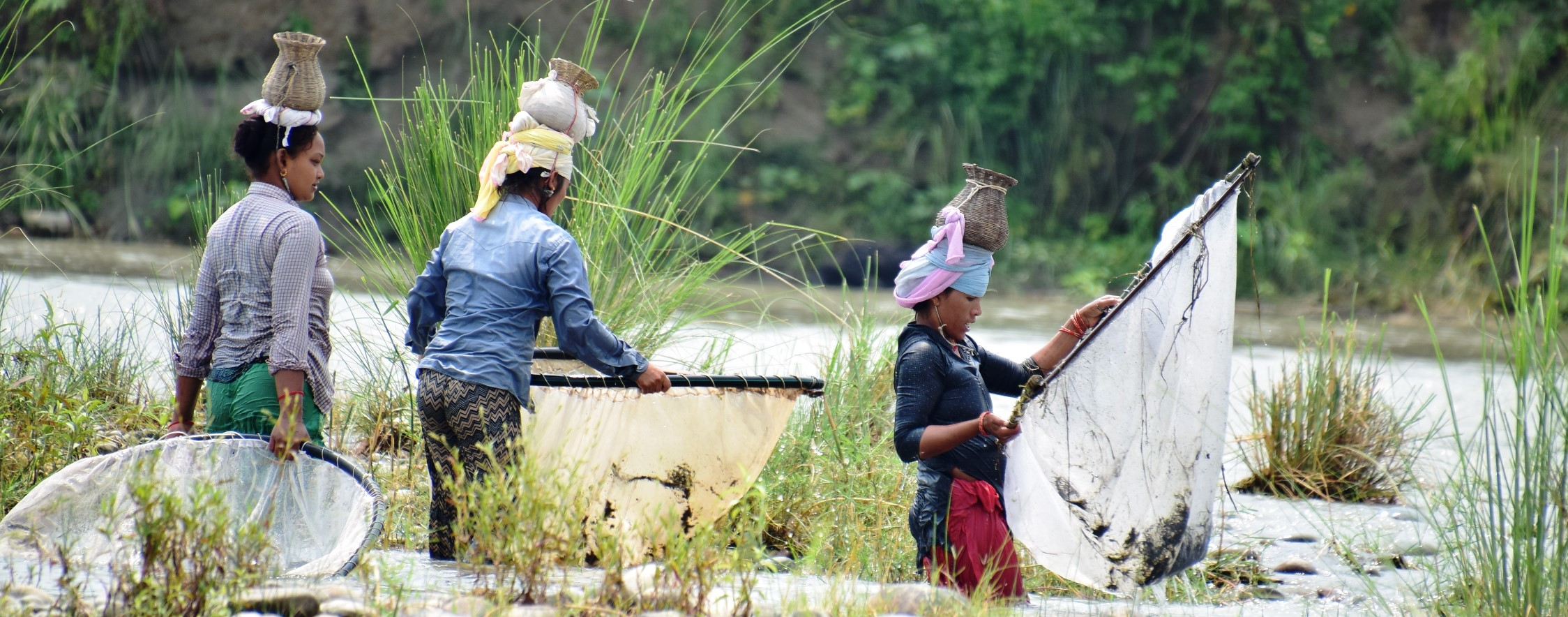 नेपाल बाढी उत्थानशीलता पोर्टल